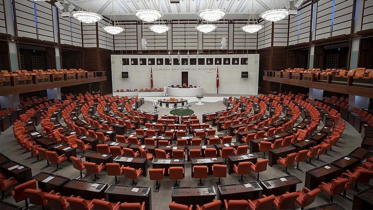 Meclis bu hafta down sendromlu ve otizmli bireylerin sorunlarını ele alacak