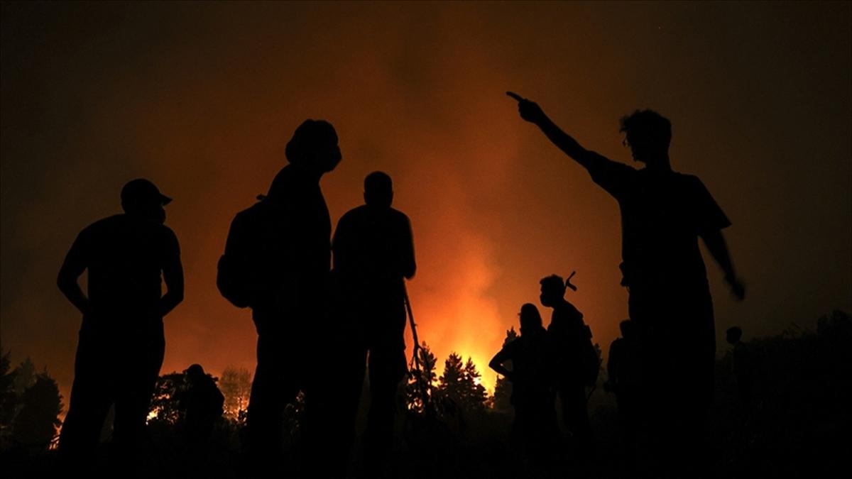 Cezayir'de 42 kişinin ölümüyle sonuçlanan orman yangınlarında bilanço ağırlaşıyor