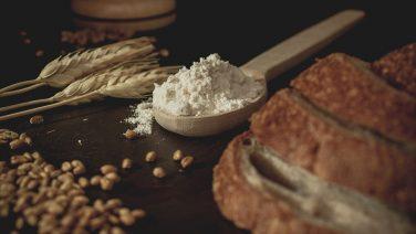 FAO: Küresel gıda fiyatları 2 aylık düşüşün ardından yeniden yükselişte