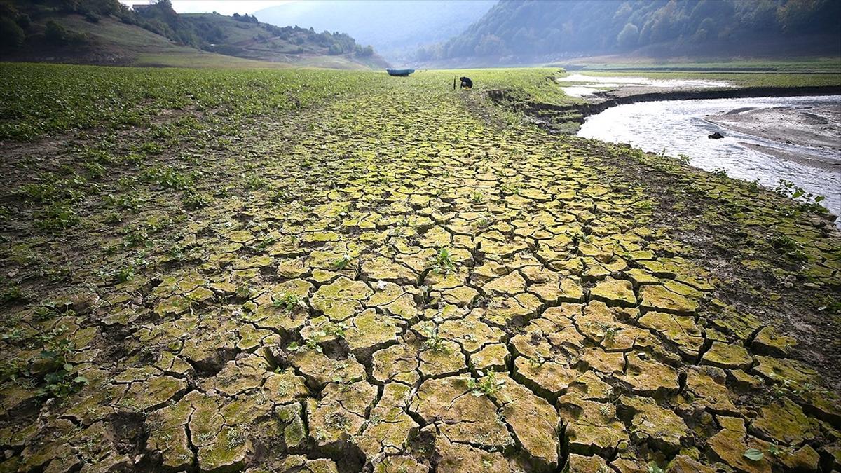 Her yıl çölleşme ve kuraklık nedeniyle 12 milyon hektar arazi kaybediliyor,