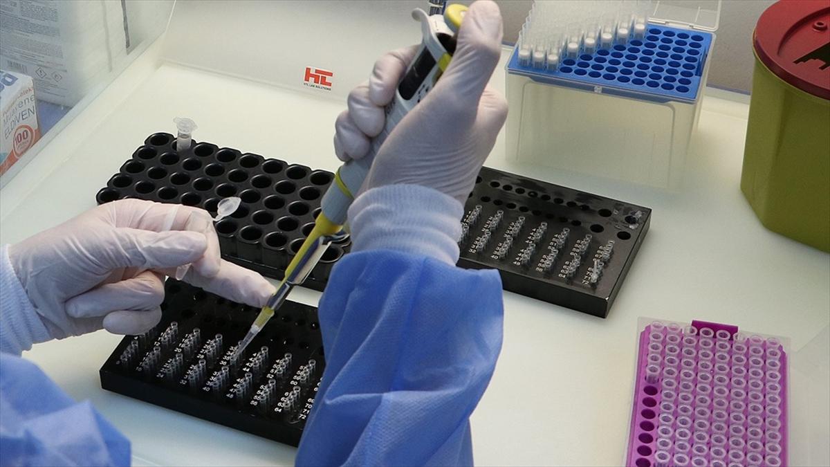 Koronavirüs varyantları güncel PCR testlerinden kaçamıyor