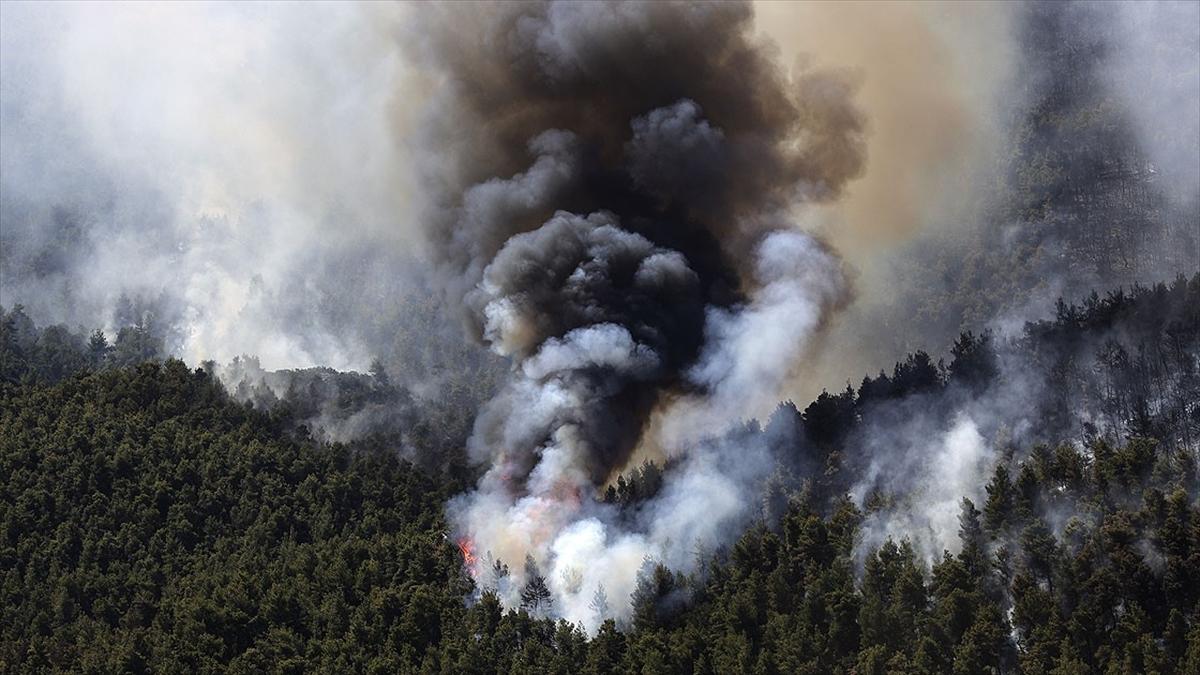 Atina yakınlarında 2 gündür devam eden orman yangınlarında 80-90 bin dönüm arazi kül oldu