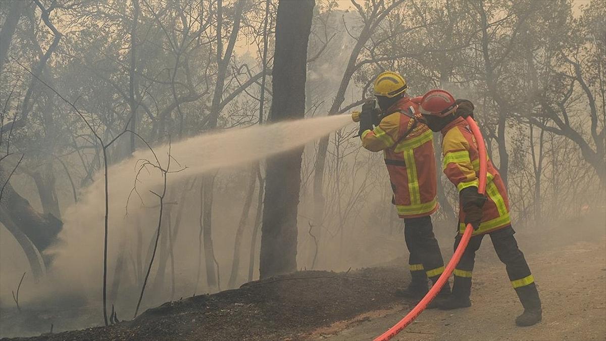 Fransa'nın Var bölgesindeki yangın 11 gün sonra söndürülebildi