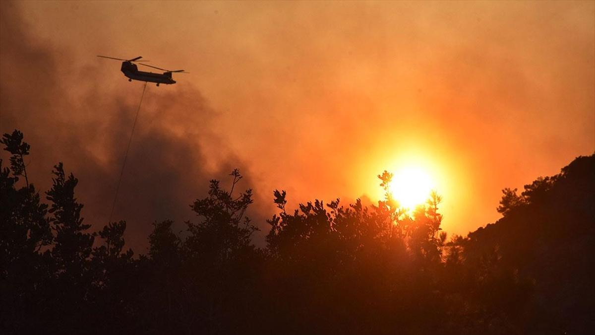 Muğla ve ilçelerindeki orman yangınlarıyla ilgili 15'in üzerinde soruşturma dosyası açıldı
